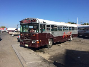 all the buses in Belize look like this