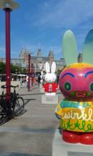 Amsterdam Bunnies