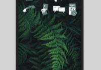 Necuno KDE Plasma Mobile ile Çalışan Yeni Bir Açık Kaynak Akıllı Telefon