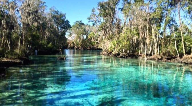 5 Springs in Florida to Visit