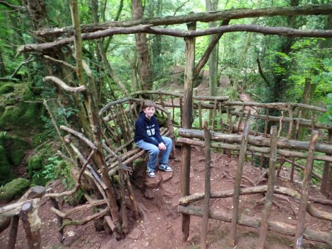 Tom at Puzzlewood, inspiration for JRR Tolkein's Lord of the Rings and The Hobbit