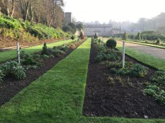 Recreating the 17th Century Garden at Dyrham Park