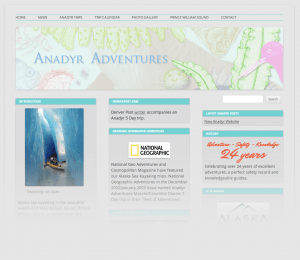 anadyr_wordpress_homepage