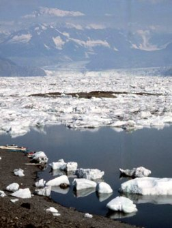 Not your typical beach break! Columbia glacier 2003.