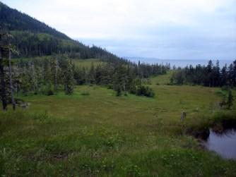 Hiking through heather