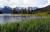 Solitude time in the Alaskan Wilderness