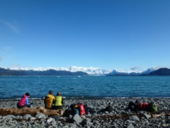 Life couldn't be better! On the north side of Glacier Island, looking into Columbia Bay