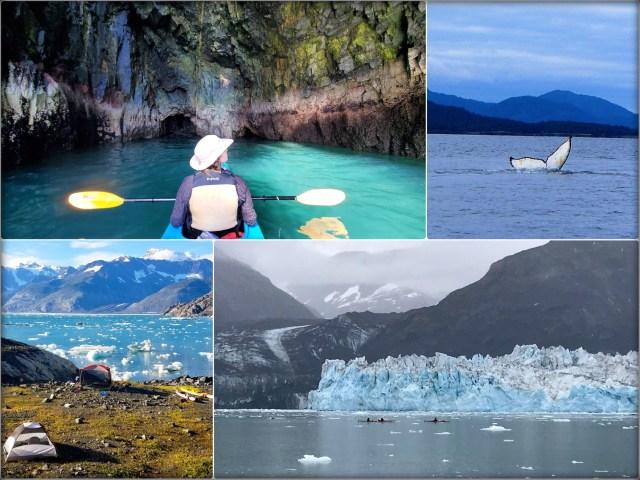 Kayak_Camp_GlacierIsland_ColumbiGlacier_Iceberg_SeaLion_Wildlife_Alaska