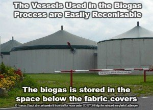 the process of anaerobic-digestion image