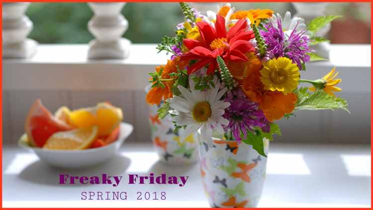 Freaky Friday Spring Blog Hop 2018