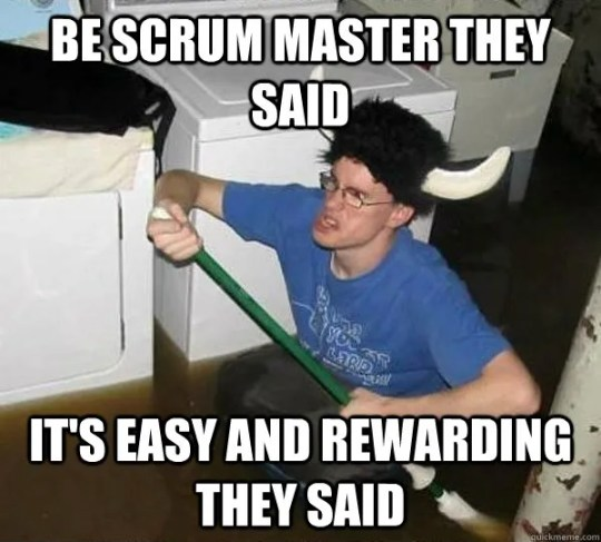 ScrumMaster easy and rewarding they said