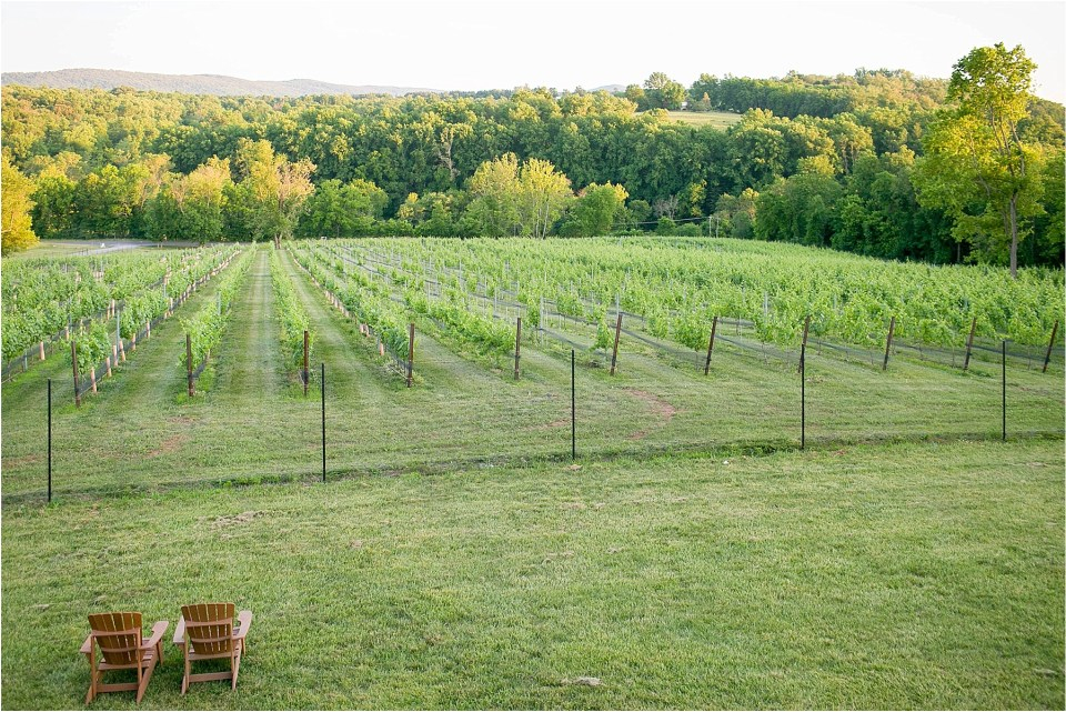 Cana Winery wedding in Virginia | Ana Isabel Photography 209