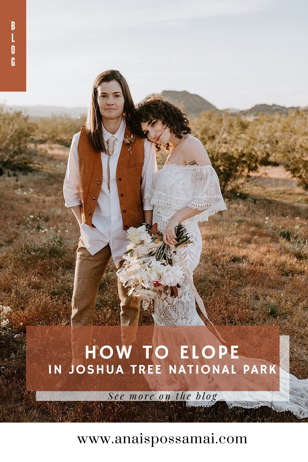 How To Elope In Joshua Tree National Park Joshua Tree Elopement Palm Springs Wedding Photographer Anais Possamai Photographer