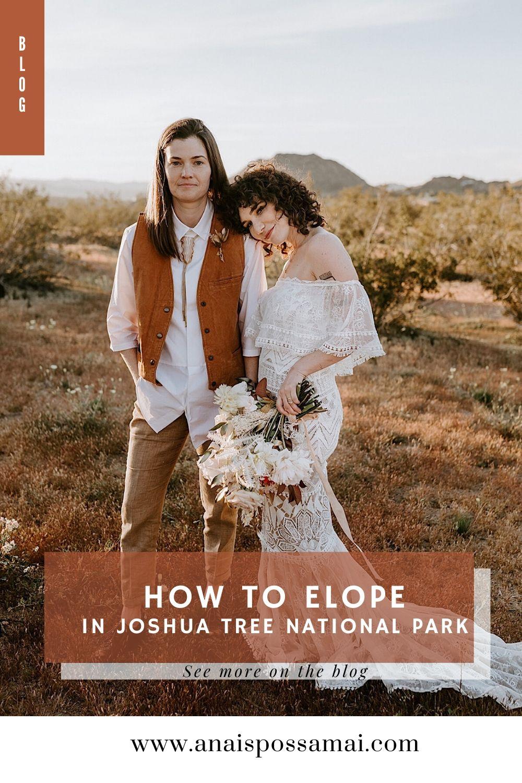 How To Elope In Joshua Tree National Park Joshua Tree Elopement Palm Springs Wedding Photographer Anais Possamai Photographer