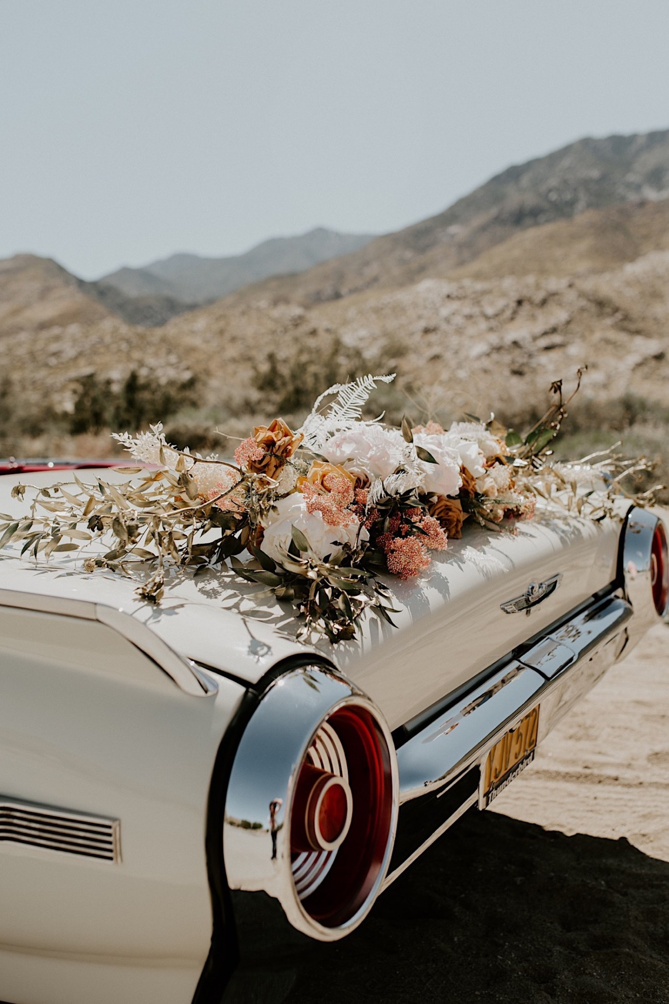 Palm Springs Elopement Los Angeles Elopement Photographer Desert Elopement 25