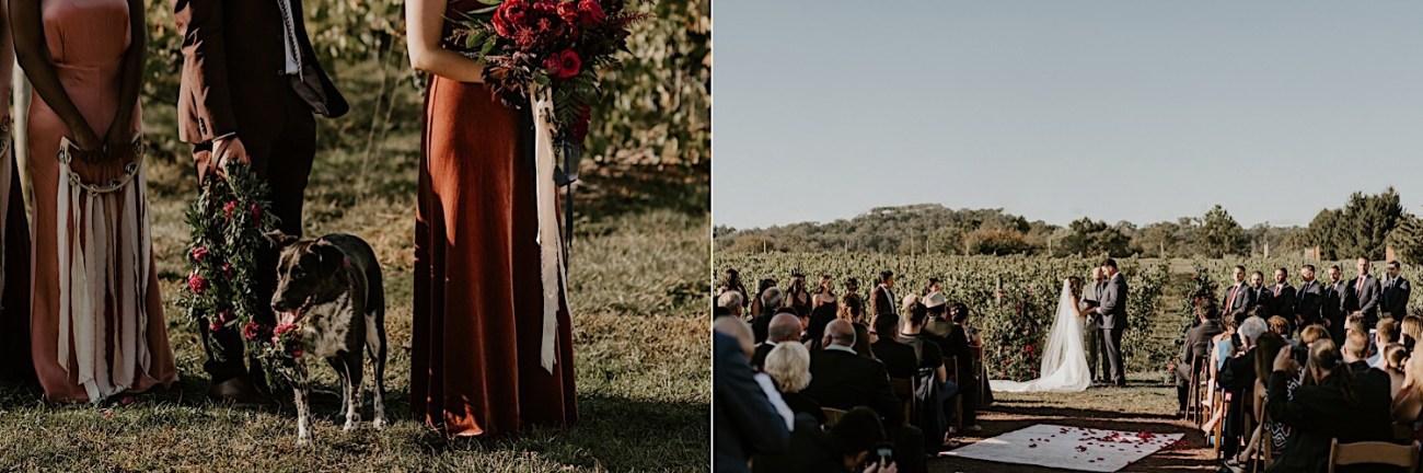 Hopewell Valley Vineyards Wedding New Jersey Wedding Photographer 06