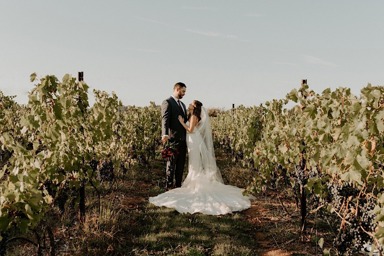 Hopewell Valley Vineyards Wedding New Jersey Wedding Photographer 15