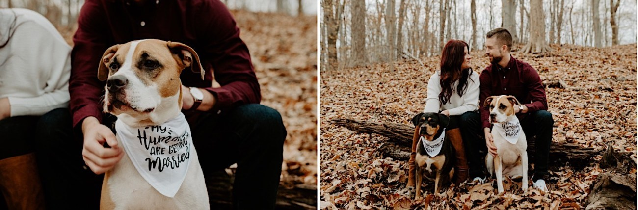 Tyler State Park Engagement Session Philadelphia Wedding Photographer Philadelphia Engagement Session 20