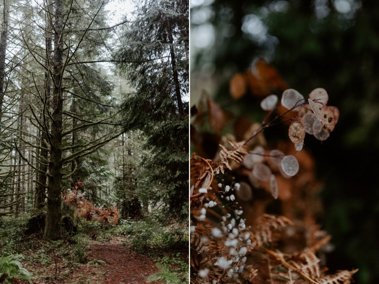 The Woodlands House Sandy Oregon Elopement Portland Elopement Photographer PNW Adventurous Elopement Anais Possamai Photography 012