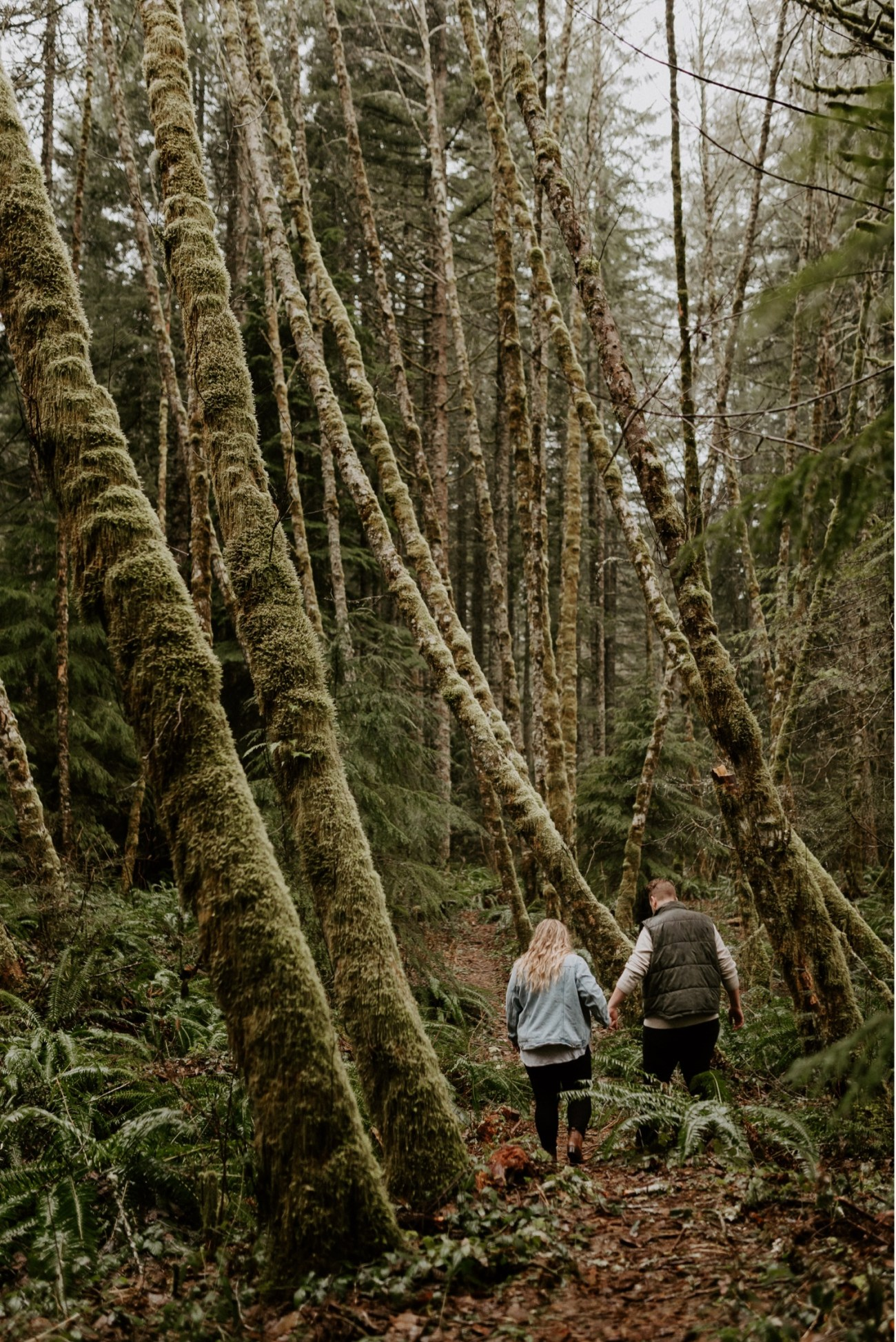 Couple walking in Mt Hood National Forest for their Engagement Photos. Oregon Wedding Photographer Portland Elopement Photographer Anais Possamai Photography349