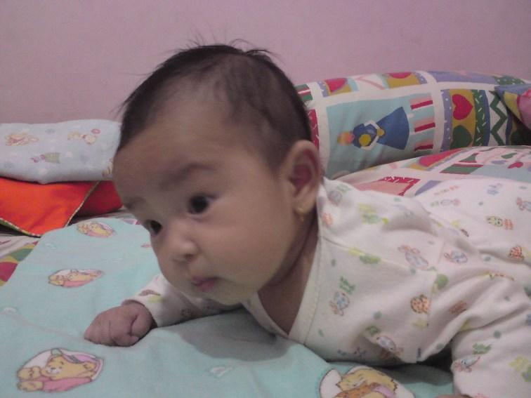 DSC01176 20120511