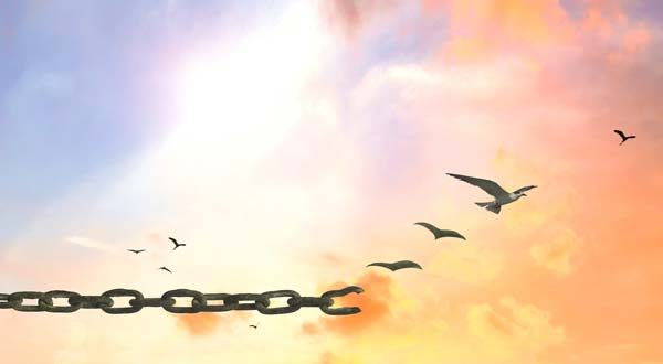 تحليل قصيدة أبو القاسم الشابي إذا الشعب يوما أراد الحياة
