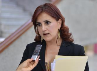 Exhorta la diputada Dulce María García acontinuar con el trabajo legislativo plural