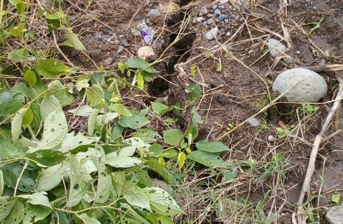 Falla geológica afectan carretera de Banderilla-Misantla