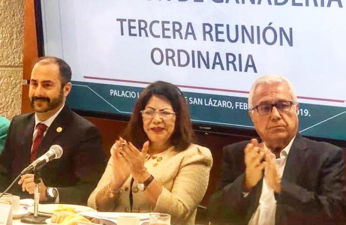 Carmen Mora atenta al futuro de la ganadería en el país