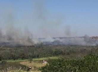 Incendios en Emiliano Zapata