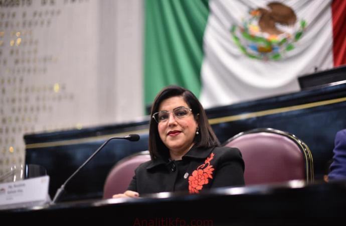 Colectivos piden continuidad de Namiko Matzumoto en Derechos Humanos: Rosalinda Galindo Silva