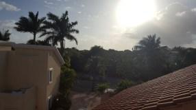Dimineața pe .. căldură