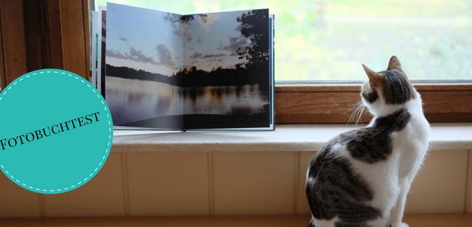 Katze an Fotobuch