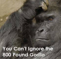 The Gartner 800 pounds gorilla, illustration in a blog post by Jonny Bentwood for the IIAR website