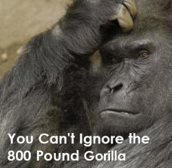 The Gartner 800 pounds gorilla, illustration in a blog post by Jonny Bentwood for the IIAR website