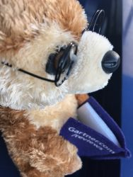 Gartner Peer Insights teddy bear