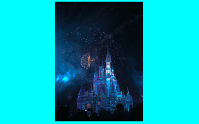 What healthcare data people can learn from Disney