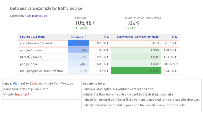 data-analysis-example-by-traffic-source-data-studio