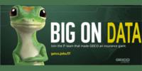 geico_200x100
