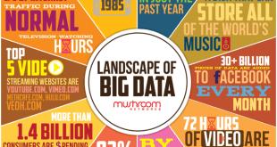 Landscape of Big Data