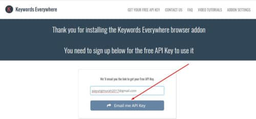 3 Keyword Everywhere - Keyword Tool Dapatkan API Key