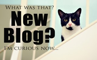 10 Things To Know Before You Start A Blog