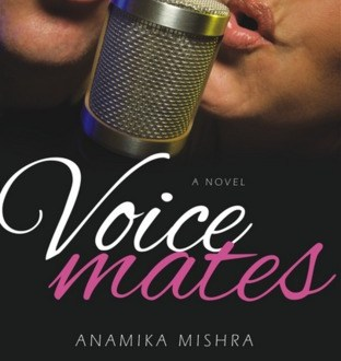 An Excerpt From My Novel VoiceMates