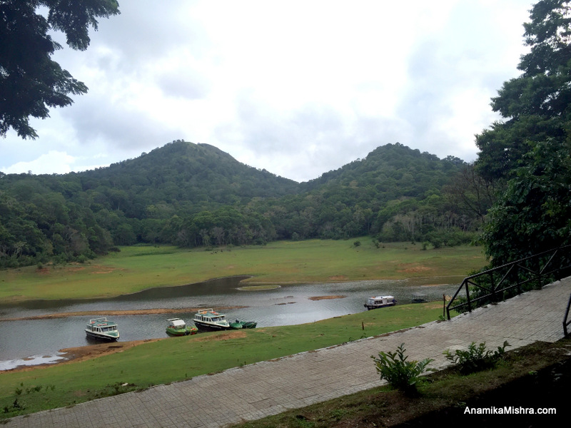 5 Best Things To Do In Thekkady + Photos From My Tour