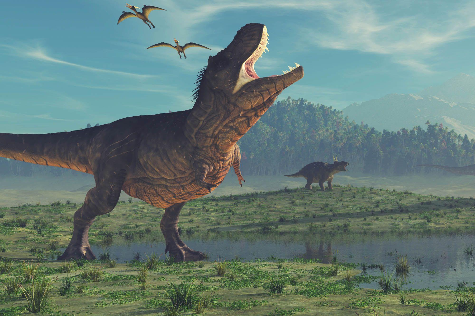 8 حقائق مثيرة عن الديناصورات حقائق ومعلومات عن الديناصورات انا مسافر