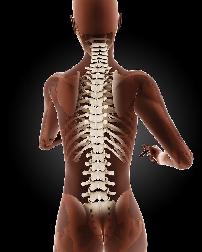 自発動気功の起こし方|背骨矯正などに効果|自発動