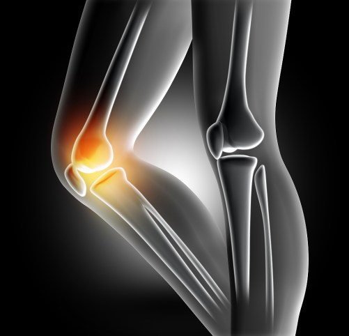ヒザ痛と肩こり|ヒザとアゴ、肩周辺の連動