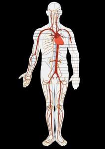 高血圧と性格