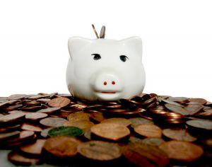 piggy Cloud Insurance