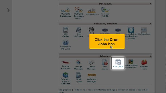 Setup a cron job in cPanel